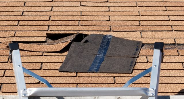 Is Your Roof Streaking?